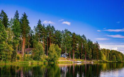 5 Ways to a Healthy Shoreline