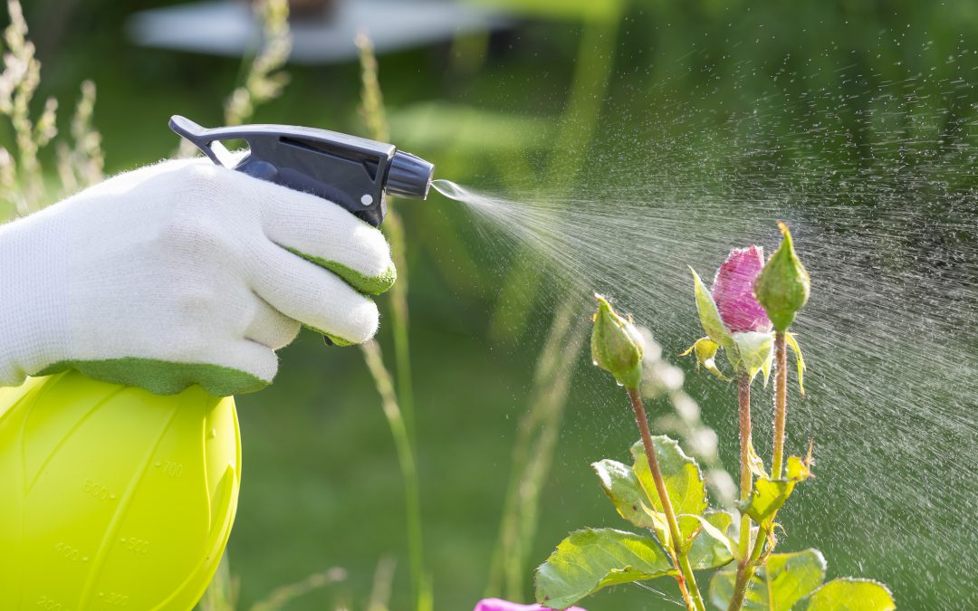 Protecting Your Gardens, Lawn…and Your Lake