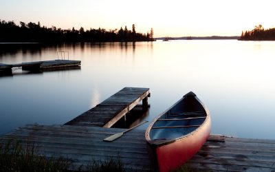 3 Easy Things to Do For Your Shoreline Property in 3 Years