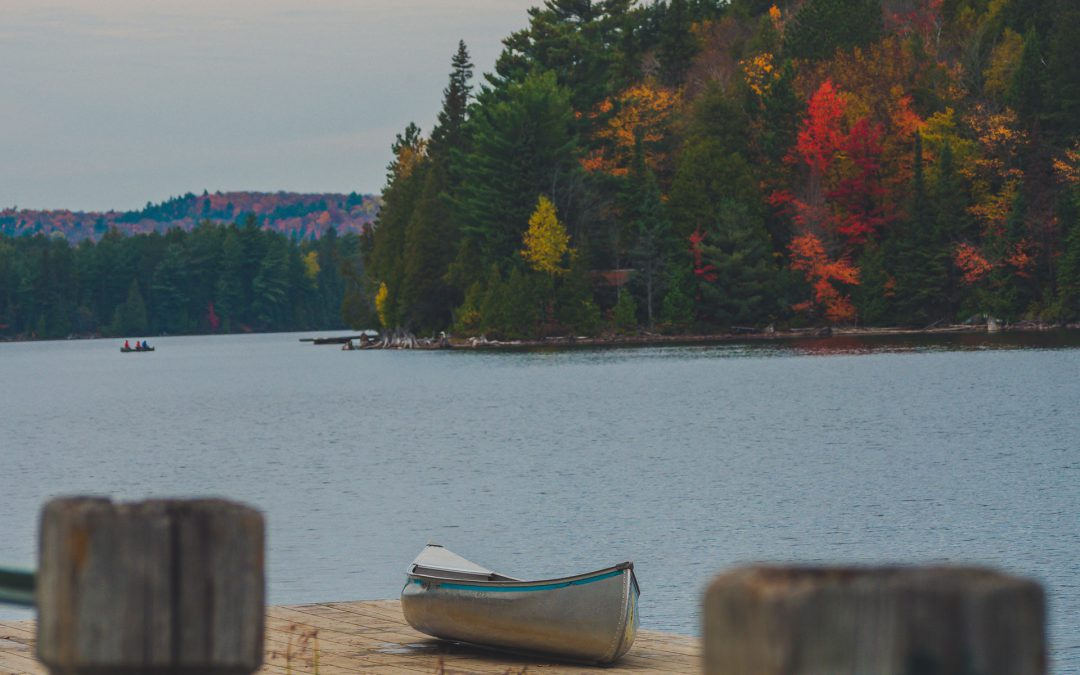 How Lake Associations Can Get Involved in Love Your Lake